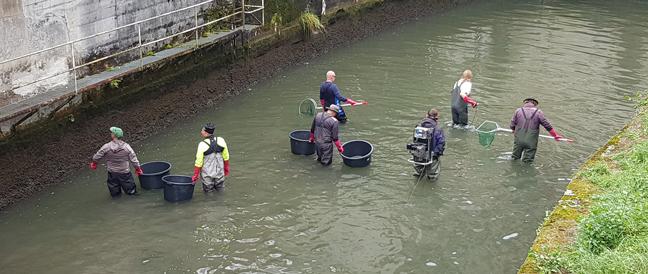 """Bachabkehr und fischbiologische Erhebung in Bruckmühl und Feldkirchen: Borloni: """"Die Vermüllung unserer Gewässer ist enorm"""""""