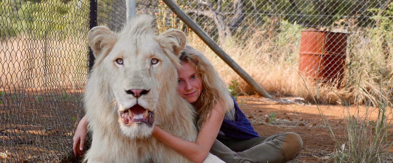 Film-Tipp: Mia und der weiße Löwe