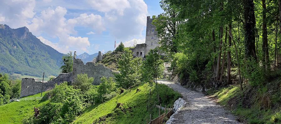 Fischbach: Burg Falkenstein soll belebt sein