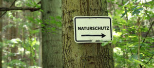 Naturschutz in Bayern: Gewinner, Verlierer, Fazit & Ausblick!
