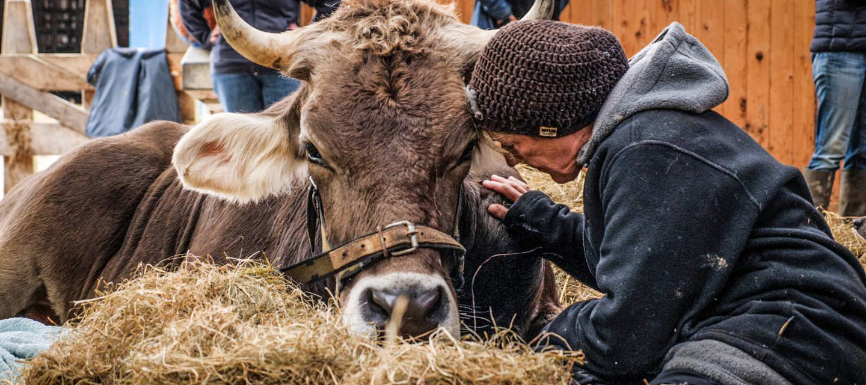 Film-Tipp: Butenland