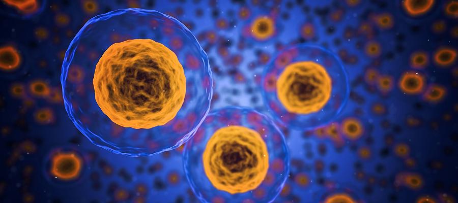 """Maßnahmen zum Infektionsschutz gegen das Coronavirus – Hierl: """"Bewahren Sie einen klaren Kopf!"""""""