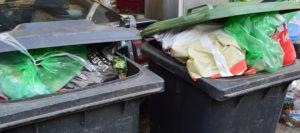 Landkreis Mühldorf: Wohin mit durch Coronaviren kontaminiertem Abfall