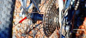 Radsport- und Tourismusverbände befürchten Unbill für Biker: Sperrschilder auf ungeeigneten Wegen?