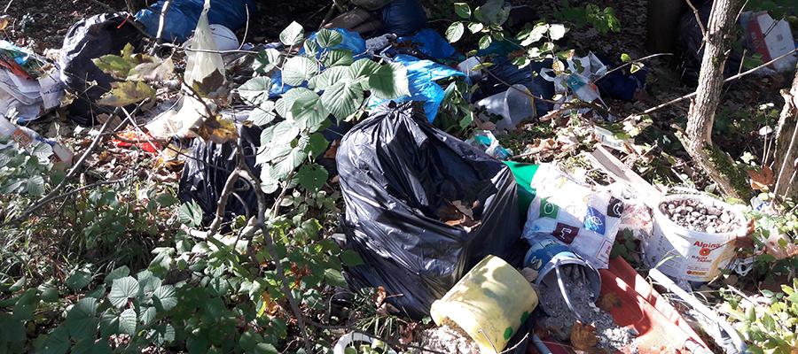Über 20 Tonnen Müll aus der freien Natur entsorgt